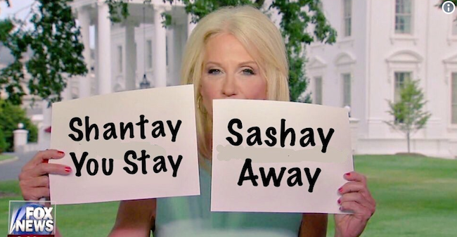 Funny Meme Cards : Kellyanne conway used flash cards during her sean hannity interview