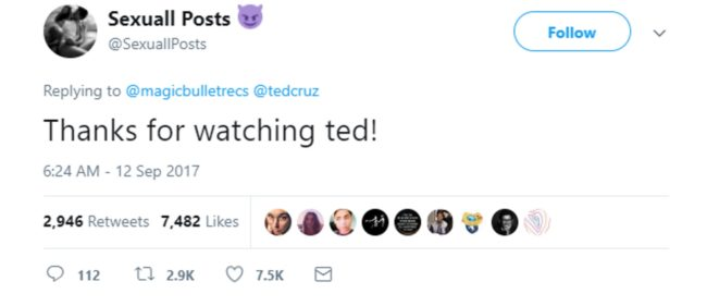 A screen shot of AdulttPosts' tweet thanking Cruz for watching.