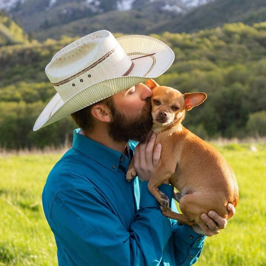 Nulo cowboy dog