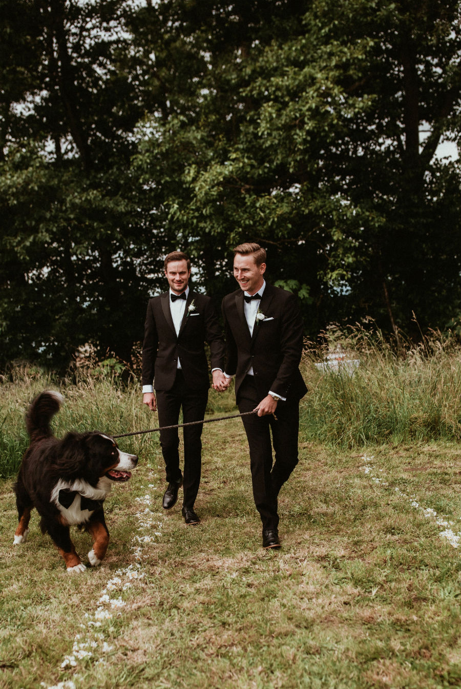Two male grooms on their wedding day