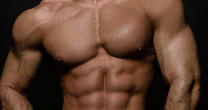 A nude, male torso